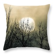 Winter Into Spring Throw Pillow by Bob Orsillo