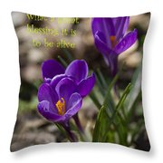 Winter Is Over - Spring Has Arrived Throw Pillow