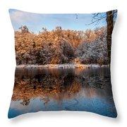 Winter Lake Reflections Throw Pillow