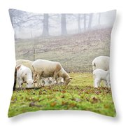 Winter Lambs Foggy Day Throw Pillow