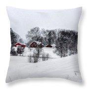 Winter Landscape 5 Throw Pillow