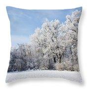 Winter Landscape Throw Pillow