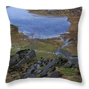 Winter Landscape Detail North Wales Throw Pillow
