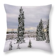 Fabulous Winter. Throw Pillow