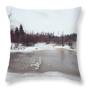 Winter Landscape With Trees And Frozen Pond Throw Pillow by Matthias Hauser