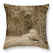 Winter Lane Throw Pillow