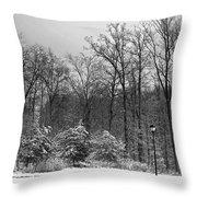 Winter Light Post Throw Pillow