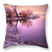 Winter Light Reflected Throw Pillow