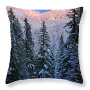 Winter Lodging Throw Pillow