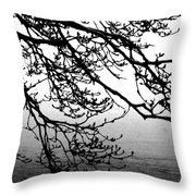 Winter Magnolia Throw Pillow