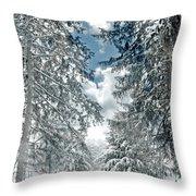 Winter Me Throw Pillow