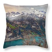 Winter Meets Spring Throw Pillow