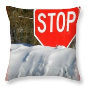 Winter Message Throw Pillow