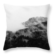 Winter Mist Throw Pillow