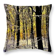 Winter Mood Lighting Throw Pillow