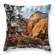 Winter Morning In Zion Throw Pillow