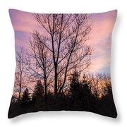 Winter Morning Sky Throw Pillow