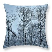 Winter Morning View Throw Pillow