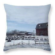 Winter Museum Throw Pillow