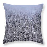 Winter Mystery Throw Pillow