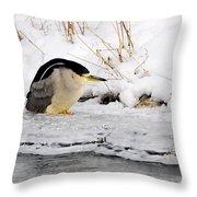 Winter Night Heron Throw Pillow