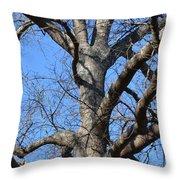 Winter Oak 2014 Throw Pillow