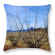 Winter Ocotillo Garden Throw Pillow