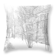 Winter Of '14 Throw Pillow
