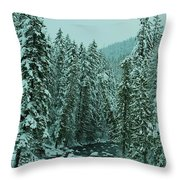 Winter On The American River Throw Pillow
