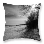 Winter On The Beach  Throw Pillow