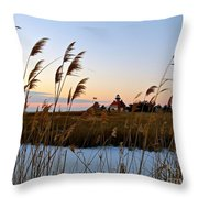Winter On The Delaware  Throw Pillow