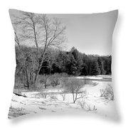 Winter On The Moose River Throw Pillow