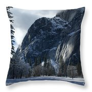 Winter On The Valley Floor Throw Pillow
