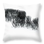 Winter Painting IIi. Ink Drawing By Nature Throw Pillow