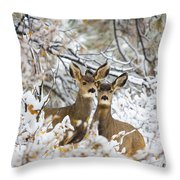 Winter Pair Throw Pillow