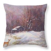 Winter Palette Throw Pillow by Howard Scherer