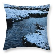 Winter Park 4 Throw Pillow