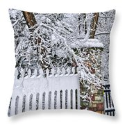 Winter Park Fence Throw Pillow by Elena Elisseeva