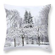 Winter Park Landscape Throw Pillow