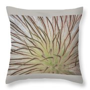 Winter Pasque Flower Throw Pillow