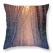 Winter Pathway Throw Pillow