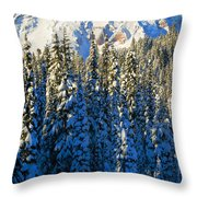 Winter Peak Throw Pillow