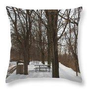 Winter Picnic Throw Pillow