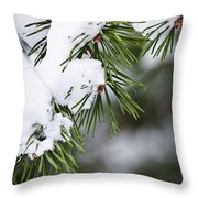 Winter Pine Branches Throw Pillow