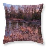 Winter Pond Landscape Throw Pillow