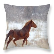 Winter Proud Throw Pillow by Mike  Dawson