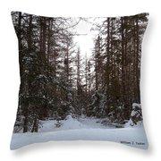 Winter Quiet Throw Pillow