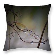 Winter Raindrops Throw Pillow
