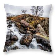 Winter Rapids V2 Throw Pillow