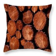 Winter Ready Throw Pillow